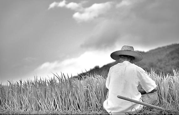 농부철학자.JPG