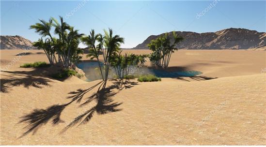 사막의 오아시스.png