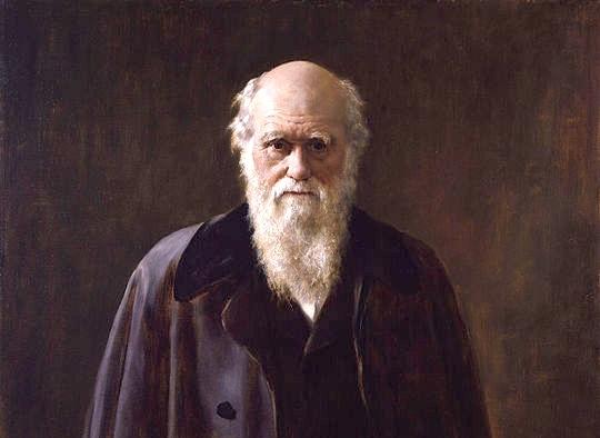540px-Charles_Robert_Darwin_by_John_Collier.jpg